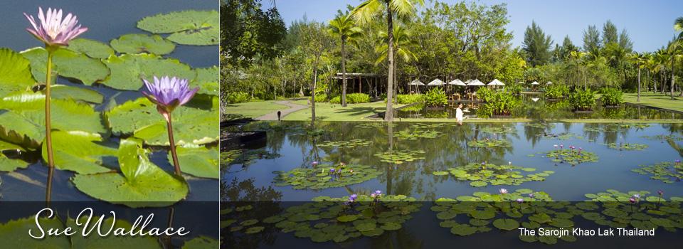 The-Sarojin-Khao-Lak-Thailand